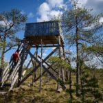 Kansikuva: Leivonmäen kansallispuisto