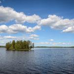Kansikuva: Etelä-Konneveden kansallispuisto